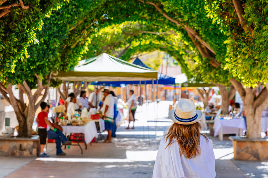 Tree covered pedestrian street in center of town of Loreto, Baja California Sur, Mexico