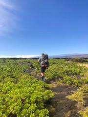 Man hiking among plants in volcanic landscape, Puna Coast Trail, Hawaii Volcanoes National Park, Hawaii Islands, USA