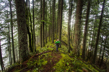 RUCKEL RIDGE, OREGON. A man hiking alone in the woods looks up into the canopy as he climbs a mossy ridge on a foggy, misty afternoon.