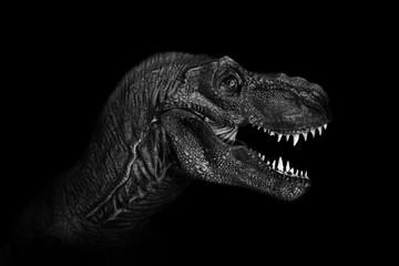 Tuinposter Olifant Tyrannosaurus Rex close up on dark background. - Image