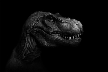 Tyrannosaurus Rex close up on dark background. - Image