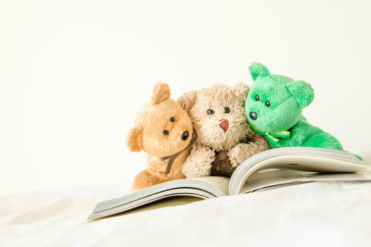 The gang of  the teddy bear with a book that is they have to read for the exam