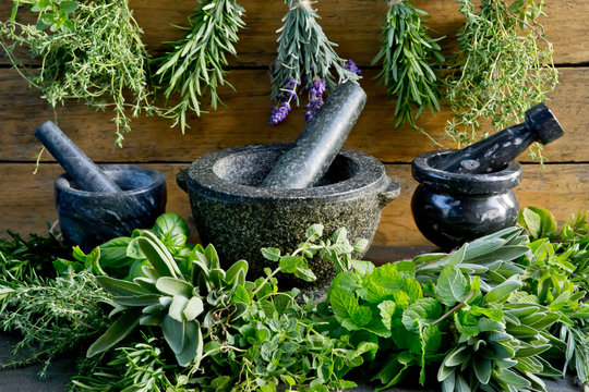 Fresh herbs with mortar and pestle against rustic wooden background