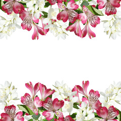 Fototapete - Beautiful floral background of Jasmine and Alstroemeria. Isolated