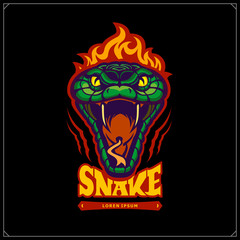 Green aggressive serpent with burning head. Snake emblem. Vector tattoo design. Design for t-shirt, poster and sport club.