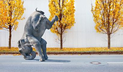 elefant macht ein Kunststück  Wall mural
