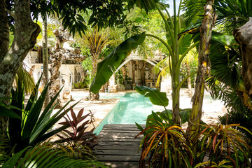 in the jungle are amenities with sofas and a pool