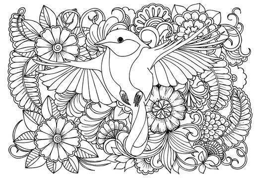 Bird and flowers  in monocrome colors.Vector black and white colorin page for colouring book. Doodles pattern