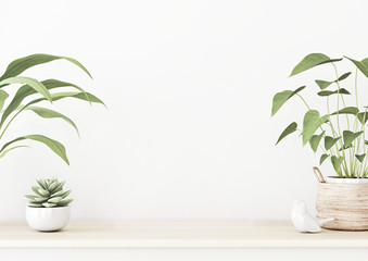 Interior wall mockup with wooden table, succulent and green home plants in basket standing on empty white background. 3D rendering, illustration.