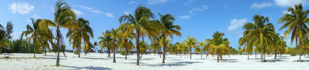 Playa Sirena Beach Tourist Resort and Palm Trees Wide Panoramic Landscape on Cayo Largo Tropical Island in Caribbean Sea, Cuban Coast