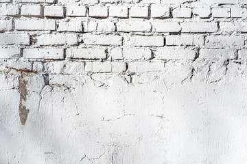 texture of old white brick wall with destroyed plaster layer and shadows from trees, architecture abstract background