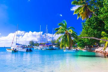 Wall Mural - Seychelles island tropical vacation - small marina in Praslin .