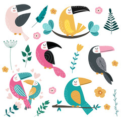 Set of different toucans and tropical leaves, flowers.Vector illustration.