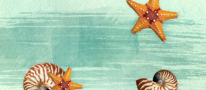 Sealife summer banner with oil paint and watercolor brushes. Seashell,  starfish  on a marine background with text space.