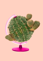 Eco-friendly planet. Green rounded cactus spinning as a globe with the pink stand against light...