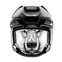 Bear, polar bear, animal wearing hockey helmet. Hand drawn image of lion for tattoo, t-shirt, emblem, badge, logo, patch.