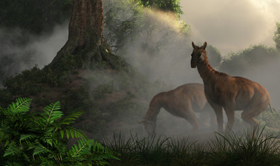 A pair of macrauchenia graze in a misty jungle of prehistoric South America.  These animals went extinct near the end of the last ice age.  3D Rendering Wall mural