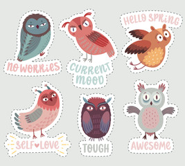 Wall Mural - Cute Woodland owls. Funny characters with different mood. Vector illustration.
