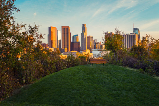 Spectacular view of downtown Los Angeles from the beautiful recreation area with green grass and a bench.