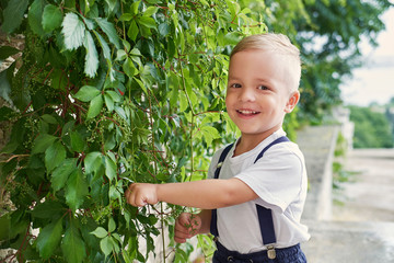 63e18164f35c Pleased child boy stands with wall plants. Portrait blond kid outdoors. Cute  face with