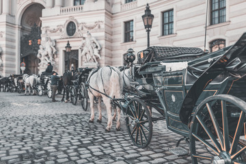 """Vienna """"Fiaker"""", horse drawn carriage in front of Imperial Palace - Hofburg"""
