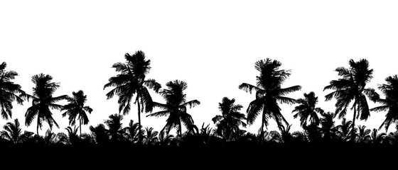 Pattern or background with realistic silhouette of tree tops, tropical palm trees, isolated on white background with space for text, vector