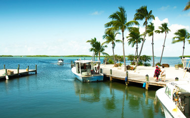 View of a marina at the gulf side (west) of the island, Islamorada, Florida, USA.