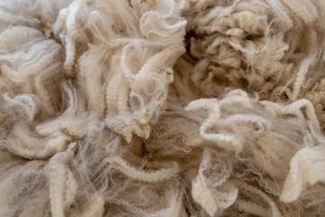 Fine, soft, warm alpaca wool