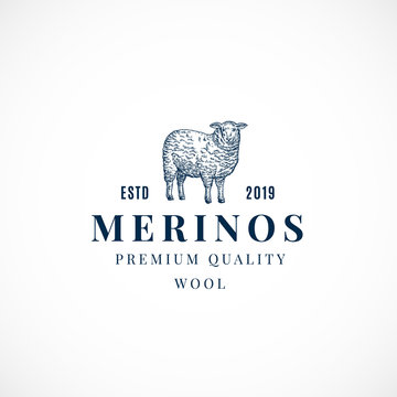Merinos Wool Abstract Vector Sign, Symbol or Logo Template. Hand Drawn Sheep Sillhouette with Retro Typography. Vintage Luxury Vector Emblem.