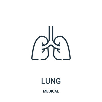 lung icon vector from medical collection. Thin line lung outline icon vector illustration.