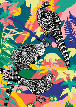 Pheasants with on colorful plants