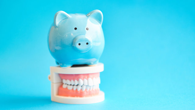 Piggy bank with White teeth model on blue background. tax offset concept. Medical Expense Deductions and Tax Breaks. affordable care act. high cost health care. dental expenses