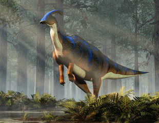 A parasaurolophus, a type of herbivorous ornithopod dinosaur of the hadrosaur family stands on two legs.  This prehistoric animal is standing in a dense forest. 3D Rendering