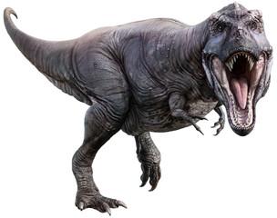 Wall Mural - Tyrannosaurus 3D illustration