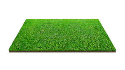 Green grass field isolated on white with clipping path. Artificial lawn grass carpet for sport background. Background for landscape.
