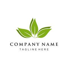 leaf or eco green logo concept