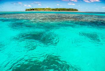 Foto auf AluDibond Reef grun Lady Musgrave atol, Great Barrier Reef, Australia