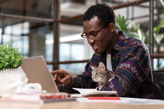 Man working together with his grey cat
