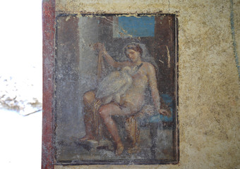 A view of the fresco 'Leda and the Swan' discovered during the excavation works at Regio V of the ancient archaeological site of Pompeii
