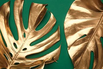 Golden monstera leaf on green background
