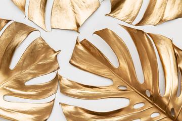 Golden monstera leaves on white background Wall mural