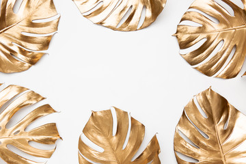 Gold monstera leaves on white background isolated