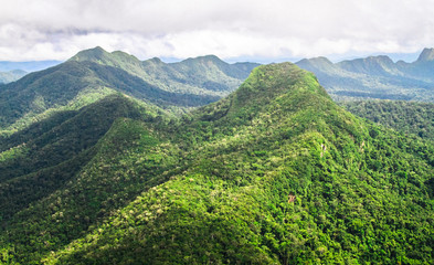 Mountains covered with pristine primary forest dominate the landscape in this aerial shot of the Cockscomb Basin, Belize.