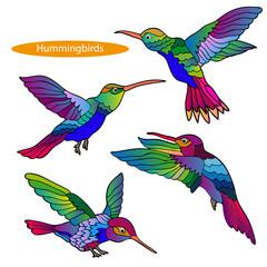 Set of hummingbirds.