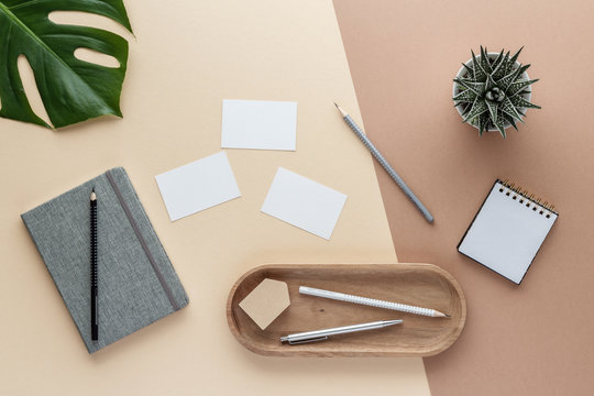 workspace notepad business card pencil notes bowl plant monstera top view with copy space for your text. flat lay.