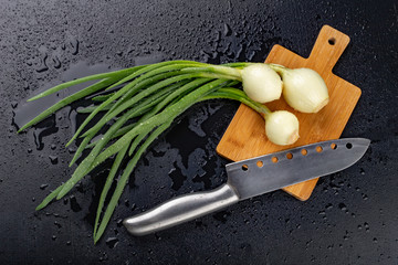 Fototapeta Fresh wet young onion on the kitchen table. Sliced chives on a kitchen board. obraz