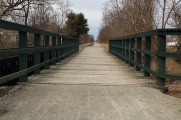 Green Wooden Foot Bridge