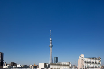 Fototapete - 東京スカイツリーと住宅街