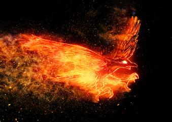 炎の鳥 Wall mural