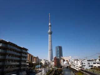 Fototapete - 京スカイツリーと住宅街